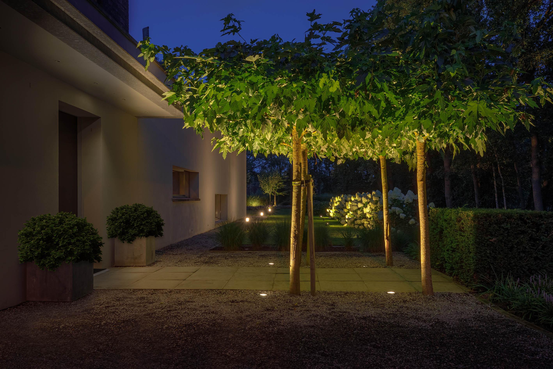 Jak oświetlić strefy w ogrodzie